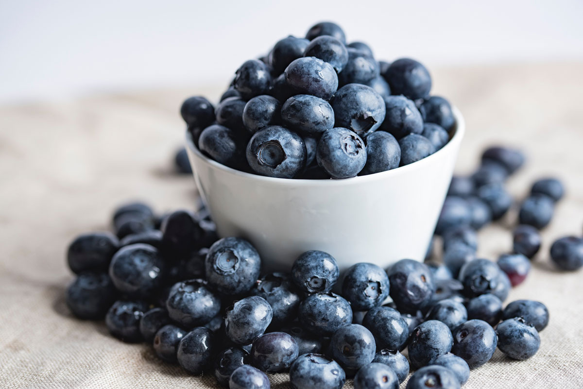 Properties of the blueberry